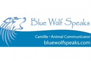 Blue Wolf Logo feature2