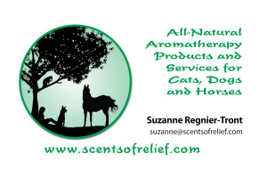 Scents of Relief feature pic