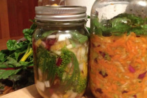 fermenting feature pic
