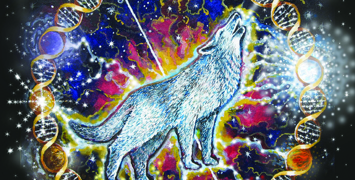 wolf-feature-pic