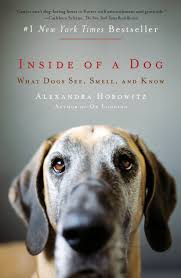 inside-of-a-dog-pic